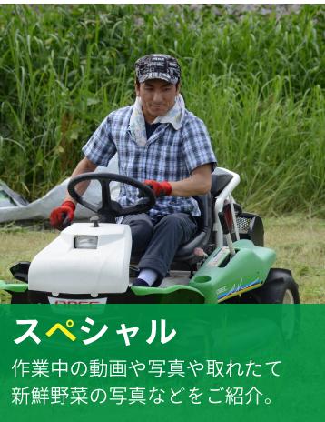 Sun坪農園 スペシャル